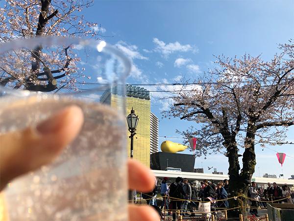 平成最後のお花見(言いたいだけ)